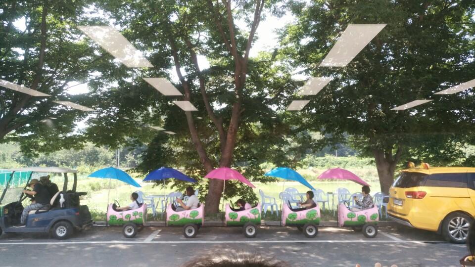 [일반] 연꽃마을 걷기 및 연잎밥 체험 활동 결과의 첨부이미지 3